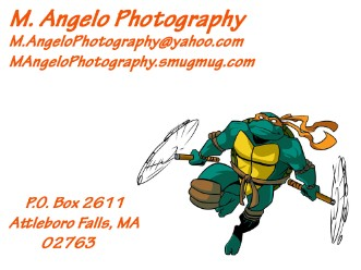 Alt= photography logo with ninja turtle